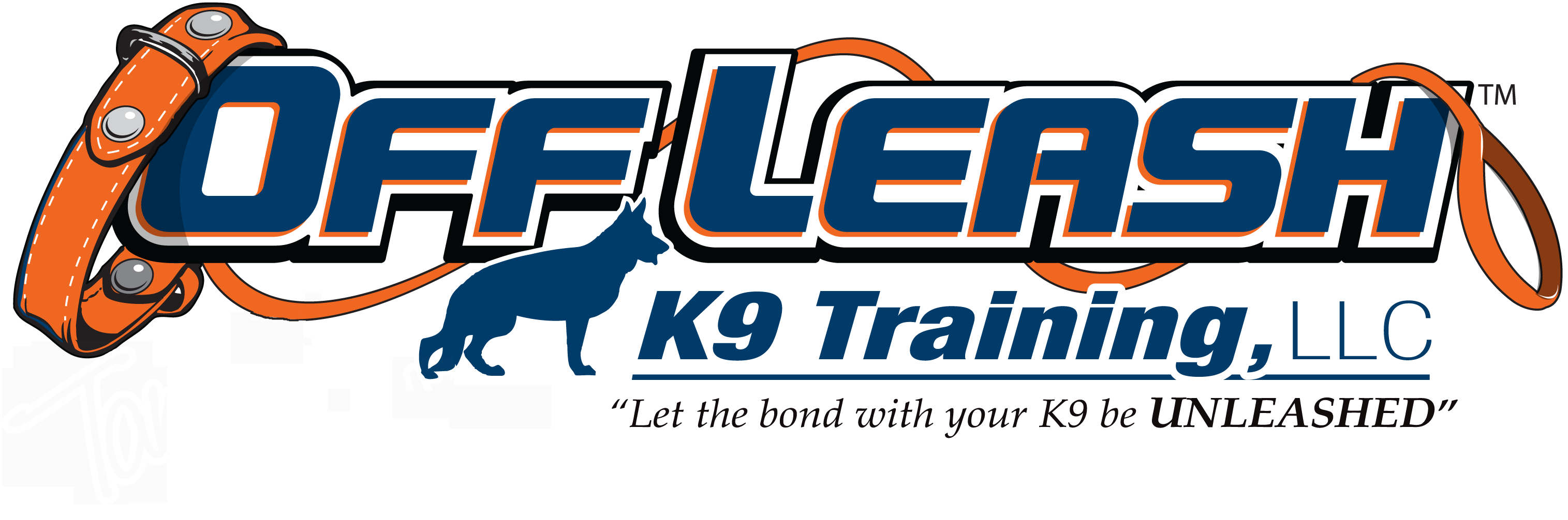 Newport News Offleash K9 Dog Training